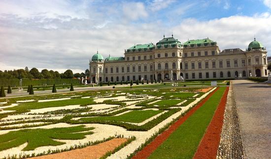Belvedere Maurilio Amorim Austria Vienna