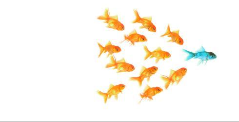 leadership team effective